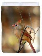 Beautiful Female Cardinal Duvet Cover