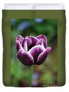 Beautiful Flowering Purple Tulip Flower Blossom In Spring Duvet Cover