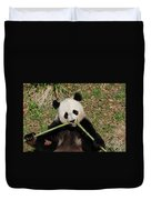 Beautiful Giant Panda Eating Bamboo From The Center Duvet Cover