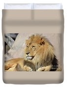 Beautiful Golden African Lion Relaxing In The Sunshine Duvet Cover