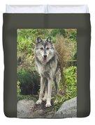 Beautiful Gray Wolf Duvet Cover