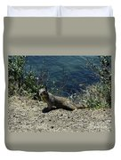 Beautiful Ground Squirrel Standing At The Edge Of The Coast Duvet Cover