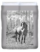 Beautiful Horse In Black And White Duvet Cover