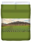Beautiful Lettuce Field Duvet Cover
