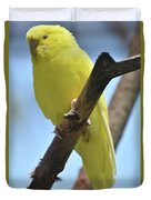 Beautiful Little Yellow Budgie Bird In Nature Duvet Cover