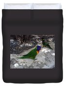 Beautiful Lorikeets Duvet Cover