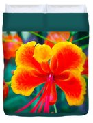 Beautiful Peacock Flower 3 Duvet Cover