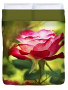 Beautiful Pink Rose Blooming In Garden Duvet Cover