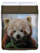 Beautiful Red Panda Duvet Cover
