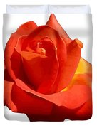 Beautiful Red Rose Photograph Vector Duvet Cover
