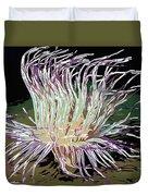 Beautiful Sea Anemone 1 Duvet Cover