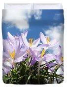 Beautiful Spring Flower Blossom In Sky Background Duvet Cover