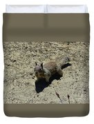 Beautiful Squirrel Standing In A Sandy Area In California Duvet Cover