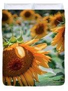 Beautiful Sunflower Field In South Carolina Duvet Cover