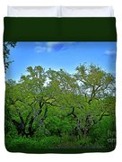 Beautiful Texas View 2 Duvet Cover