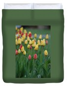 Beautiful Tulips Duvet Cover