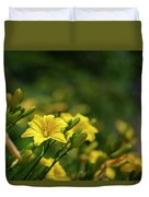 Beautiful Vibrant Yellow Lily Flower In Summer Sun Duvet Cover