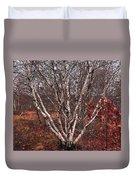 Beautiful White Birch Duvet Cover