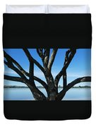 Beautiful Winters Day Duvet Cover