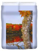 Beauty And The Birch - Nova Scotia Duvet Cover