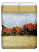 Beauty Of Bougainvillea Duvet Cover