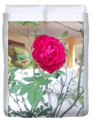 Beauty Of  Red Rose  Duvet Cover