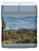 Beauty Of The Sonoran  Duvet Cover