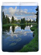 Beaver Dam At Schwabacher Landing Duvet Cover