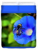 Bee Covered With Pollen On Morning Glory 3521t Duvet Cover