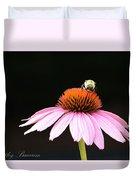 Bee On Coneflower 2 Duvet Cover