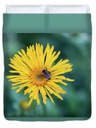 Bee On Curlyhead Goldenweed Duvet Cover