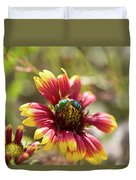 Bee On Gaillardia Duvet Cover