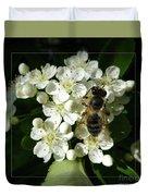 Bee On White Flowers 2 Duvet Cover