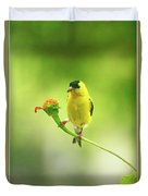 Goldfinch On Zinnia With Textures Duvet Cover