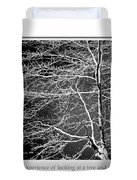Beech Tree Branches, Light And Shadow Duvet Cover
