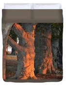 Beeches At The Beach Duvet Cover