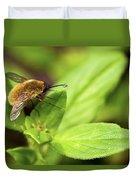 Beefly Duvet Cover