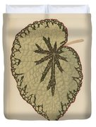 Begonia Marshallii  Duvet Cover