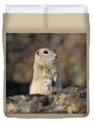 Belding Ground Squirrel Duvet Cover