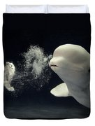 Beluga Delphinapterus Leucas Whale Duvet Cover by Hiroya Minakuchi