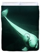 Beluga Whale 3 Duvet Cover