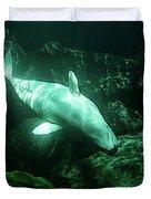 Beluga Whale 5 Duvet Cover