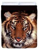 Bengal Tiger - 2 Duvet Cover