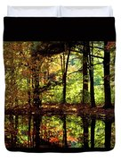 Bernharts Dam Fall 006 Duvet Cover