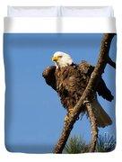 Berry Eagle Duvet Cover