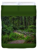 Beyond The Bridge Duvet Cover