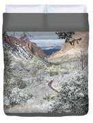 Big Bend Window With Snow Duvet Cover