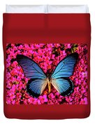 Big Blue Butterfly On Kalanchoe Flowers Duvet Cover