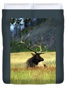 Big Bull 2 Duvet Cover