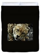 Big Cats 50 Duvet Cover
